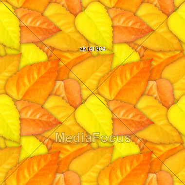 Abstract Camouflage Background With Natural Autumn Foliage. Seamless Pattern. Close-up Stock Photo