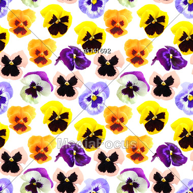 Abstract Seamless Pattern With Motley Flowers Of Pansyes . Isolated On White Background. Close-up. Studio Photography Stock Photo
