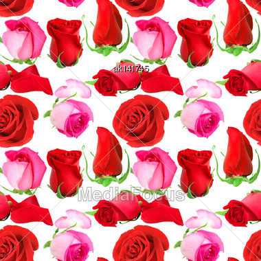 Abstract Seamless Pattern With Pink Flowers And Buds Of Roses. Isolated On White Background. Close-up. Studio Photography Stock Photo
