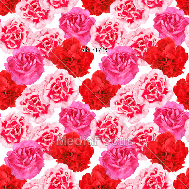 Abstract Seamless Pattern With Red And Pink Flowers Of Carnations. Isolated On White Background. Close-up. Studio Photography Stock Photo