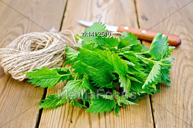 Bunch Of Fresh Green Nettle, Knife, Ball Of Twine On A Wooden Boards Background Stock Photo