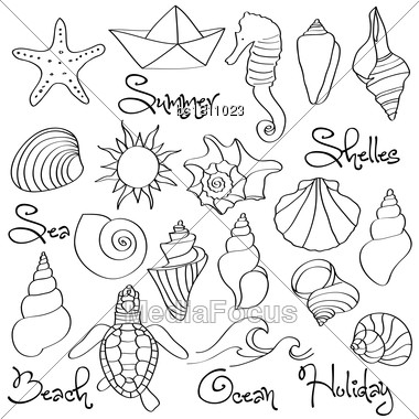 Hand Drawn Doodle Seashells And Sea Elements Set. Vector Format Stock Photo