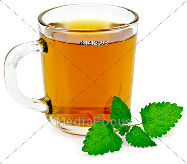 Healing Herbal Tea In A Glass Mug With A Sprig Of Melissa Isolated On White Background Stock Photo