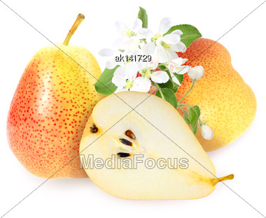 Heap Of Fresh Yellow-orange Pears With Green Leaf And White Flowers. Placed On White Background. Close-up. Studio Photography Stock Photo