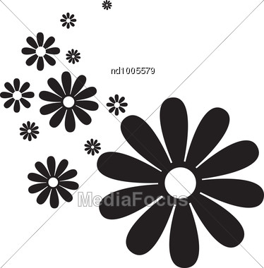 Illustration Of Black And White Daisy Flowers Stock Photo