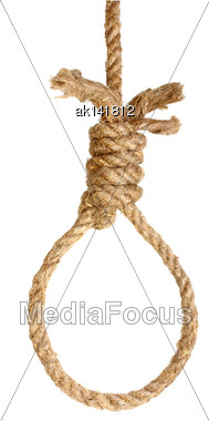 Only Rope Noose Isolated On White Background. Close-up. Studio Photography Stock Photo