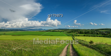 Panorama Field Of Wheat Against The Blue Sky With Clouds Stock Photo