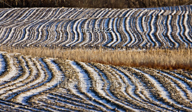 Ploughed Feild In Winter Lines In Soil White Stock Photo