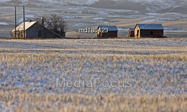 Prairie Landscape Winter Saskatchewan Canada Evening Light Stock Photo