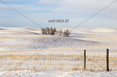 Prairie Landscape In Winter Saskatchewan Canada Rural Stock Photo