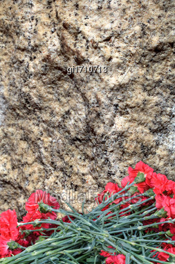 Red Carnations On A Background Of A Stone Plate. You Can Add The Text You Want Stock Photo