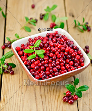 Ripe Red Lingonberries In A Bowl With A Sprig Of Berries And Leaves On The Background Of Wooden Boards Stock Photo