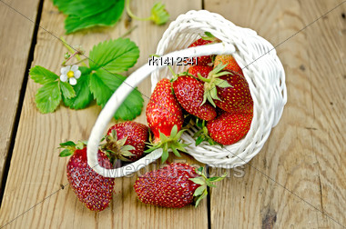Ripe Red Strawberries Poured From A White Wicker Basket, Flowers And Strawberry Leaves On The Background Of Wooden Boards Stock Photo