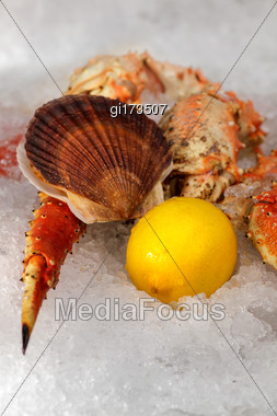 Seafood On Ice At The Fish Market. Close-up Stock Photo