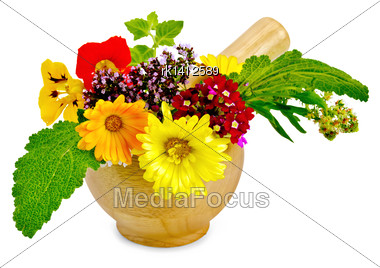 Sprigs Of Mint, Flowers Of Oregano, Calendula, Nasturtium, Mignonette, Verbena, Sage In A Wooden Mortar Isolated On White Background Stock Photo