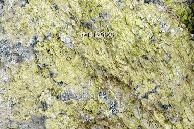 Texture Of Natural Gray Granite With Green Scales Mineral Stock Photo