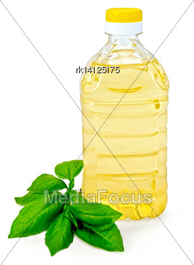 Vegetable Oil In A Bottle With Basil Isolated On White Background Stock Photo