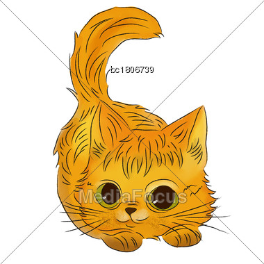 Watercolor Kitten Isolated On White Background, Vector Stock Photo