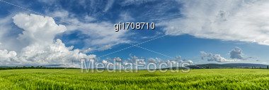 Wheat Field On A Background Of Cloudy Sky Stock Photo
