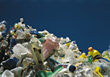 waste recycle dump recycling plastics pollution stock photo