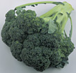 green vegetables broccoli produce stock photo