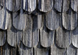 wood oak backgrounds shingles beech pine stock photography