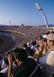crowds stadium sports people stock image