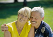 Retiring old poses white happiness adult dental stock image