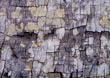 wooden cracks backgrounds brown cracked backgroundimages stock image