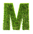 3d Grass Letter - M stock image