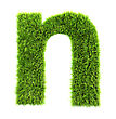 3d Grass Letter - N stock photo