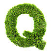 3d Grass Letter - Q stock photo