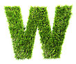 3d Grass Letter - W stock photography