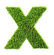 3d Grass Letter - X stock photography
