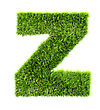 3d Grass Letter - Z stock photography