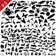 # 5 Set Of Different Animals, Birds, Insects And Fishes Vector Silhouettes