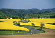 hills winding street agriculture road hilly stock photo