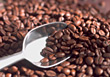 joe beans scoop coffee java stock image