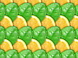 Abstract Background With Citrus-fruit Of Lemon Slices And Green Leaf With Dew For Your Design. Close-up. Studio Photography.