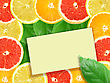 Abstract Background Of Citrus Slices With Message Card. Close-up. Studio Photography