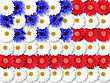 Abstract Background Of Flowers As USA Flag. Close-up. Studio Photography
