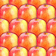 Abstract Background Of Fresh Red-yellow Apples. Seamless Pattern For Your Design. Close-up. Studio Photography. stock image