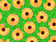 Abstract Background Of Orange Flowers And Green Leaf For Your Design. Close-up. Studio Photography.