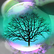 Abstract Background With A Transparent Sphere And Tree stock photography