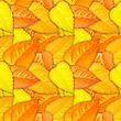 Abstract Camouflage Background With Natural Autumn Foliage. Seamless Pattern. Close-up stock image