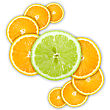 Abstract Group Of Cross Citrus Fruits Close-up Studio Photography