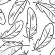 Abstract Seamless Pattern With Black-and-white Contours Of Birds Feathers. Vector Illustration.
