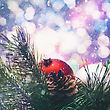 Abstract Seasonal Backgrounds With Christmas Decorations And Beauty Bokeh