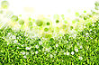 Abstract Spring Backgrounds With Defocused Bokeh stock photography