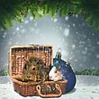 Abstract Winter And Xmas Backgrounds With Funny Animals For Your Design stock photography
